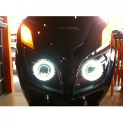 Xenon Headlight Inner Black...